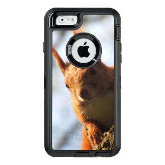 Eichhörnchen-Tier-wild lebende Tiere OtterBox iPhone 6/6s Hülle