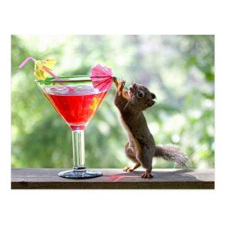 Eichhörnchen-trinkendes Cocktail Postkarte