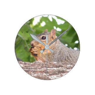 Eichhörnchen-Uhr Runde Wanduhr