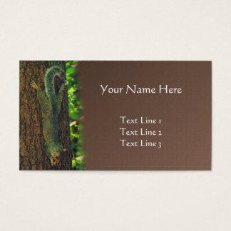 Eichhörnchen-umgedrehte Tiernatur-Kunst Visitenkarte