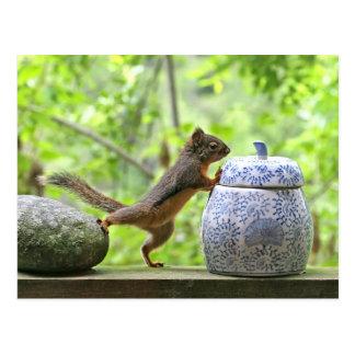 Eichhörnchen-und Plätzchen-Glas Postkarte