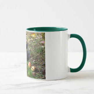 Eichhörnchen-und Steller Jay-Tier-Tasse Tasse