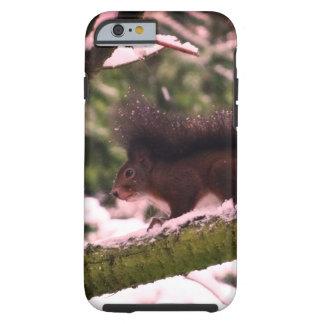 Eichhörnchen-Winter-Foto iPhone 6/6s, stark Tough iPhone 6 Hülle