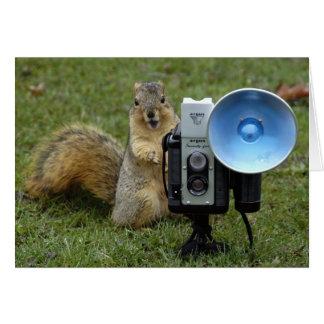 Eichhörnchenkarte groß grußkarte