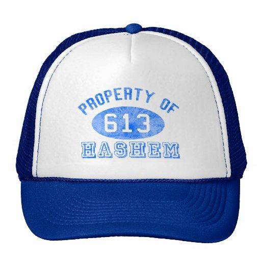 Eigentum von Hashem Hüten Baseball Mütze