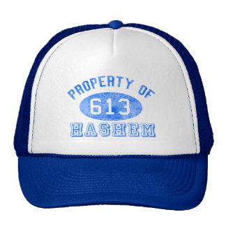 Eigentum von Hashem Hüten Trucker Kappe