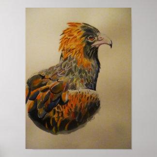 Ein Adleranstarren Poster