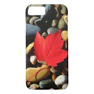 Ein Ahornblatt auf einem Felsen-Hintergrund iPhone 8/7 Hülle