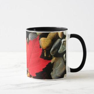 Ein Ahornblatt auf einem Felsen-Hintergrund Tasse