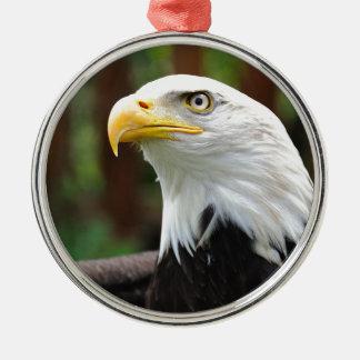 Ein amerikanisches rundes silberfarbenes ornament