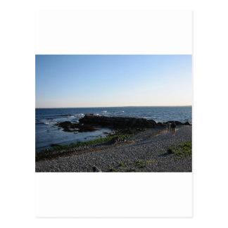 Ein anderer Newport-Strand Postkarte