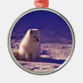 Ein arktischer Fox in Norwegen Silbernes Ornament
