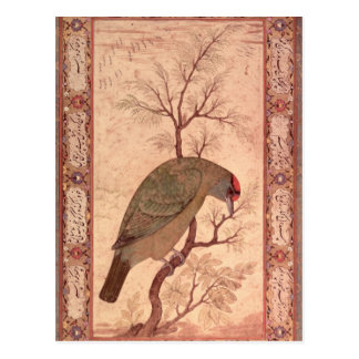 Ein Barbet Jahangir Zeitraum, Mughal, 1615 Postkarte