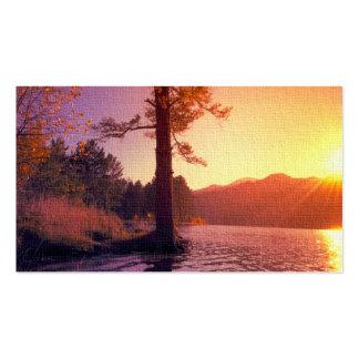 Ein Baum am Sonnenuntergang Visitenkarten