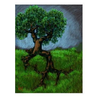 Ein Baum auf einem Hügel Postkarte