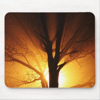 Ein bloßer Baum am Sonnenuntergang Mousepad