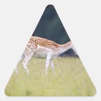 Ein Brache-Rotwild (Damhirschkuh) mit Kitz Dreieckiger Aufkleber