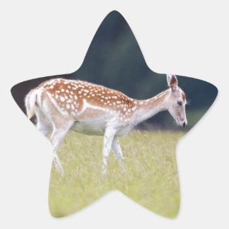 Ein Brache-Rotwild (Damhirschkuh) mit Kitz Stern-Aufkleber