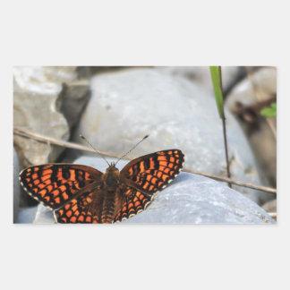 Ein bunter Schmetterling Rechteckiger Aufkleber