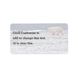 Ein einsamer Eisbär Adressaufkleber