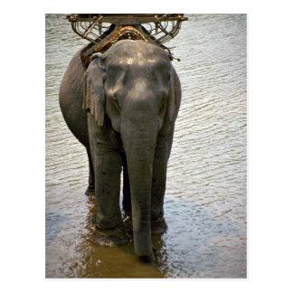 Ein Elefant im Norden, Thailand Postkarte