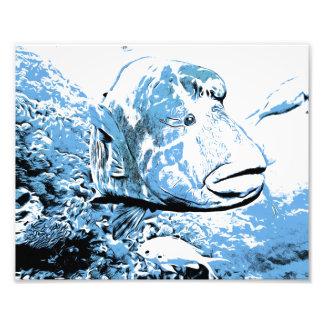 Ein Fisch rief Wally an Fotodruck