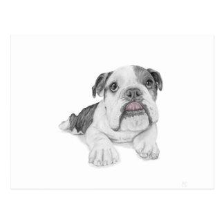 Ein frecher Bulldoggen-Welpe Postkarte