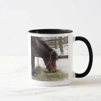 Ein gebürtiges Pferd ursprünglich von Gotland wo Tasse
