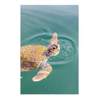 Ein großer Schwimmen-Meeresschildkröte Caretta Briefpapier