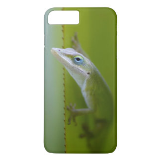 Ein grünes anole ist eine arboreal Eidechse iPhone 8 Plus/7 Plus Hülle