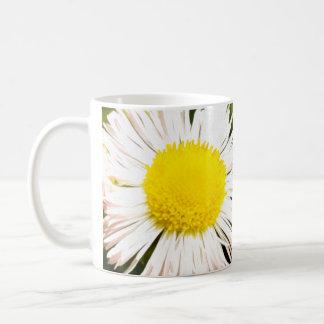 Ein helles gelbes Gänseblümchen Kaffeetasse