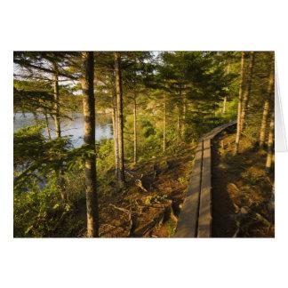 Ein hölzerner Gehweg im Acadia-Nationalpark Maine Karte
