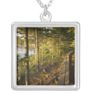 Ein hölzerner Gehweg im Acadia-Nationalpark Maine Versilberte Kette