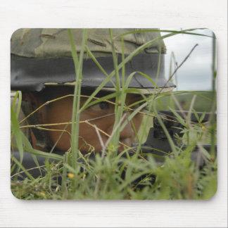Ein Infanterist mit den königlichen thailändischen Mousepad