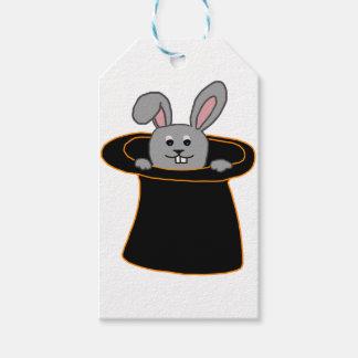 Ein Kaninchen im Hut Geschenkanhänger