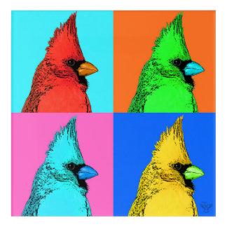 Ein Kardinal einer anderen Farbe Acryldruck
