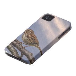 Ein kleiner Brown-Vogel iPhone 4 Hüllen