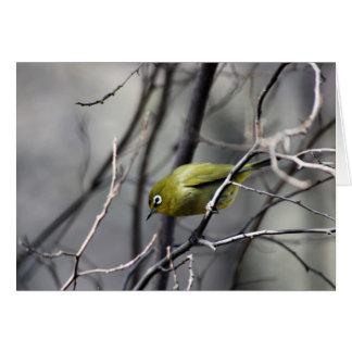 Ein kleiner Vogel geflüstert in meinem Ohr Karte