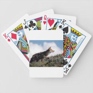 Ein Kojote geht in Yellowstone Nationalpark, Wyomi Bicycle Spielkarten