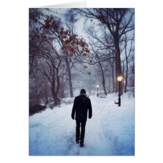 Ein kühler Weg im Central Park Karte