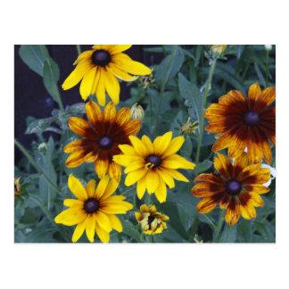 Ein lebender Blumenstrauß Postkarte