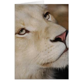 Ein leichter Löwe Karte