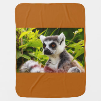 ein Lemur von Madagaskar auf Baby-Decke Babydecke