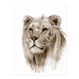 Ein Löwe - ohne den Stolz, der Skizze-Kunst Postkarte