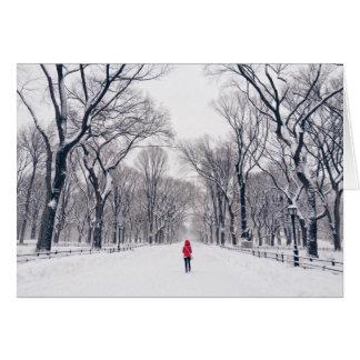 Ein modernes kleines Rotkäppchen im Central Park Karte