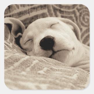 Ein müder Hund Quadratischer Aufkleber