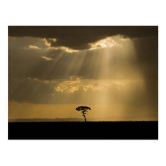 Ein mystischer Sonnenuntergang auf Rückkehr zum Postkarte