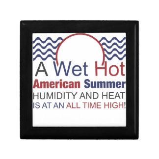 Ein nasser heißer amerikanischer Sommer Erinnerungskiste