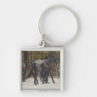 Ein neues Pferd Schlüsselanhänger
