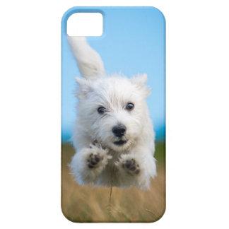 Ein niedlicher Westhochland-Terrier-Welpen-Betrieb Barely There iPhone 5 Hülle
